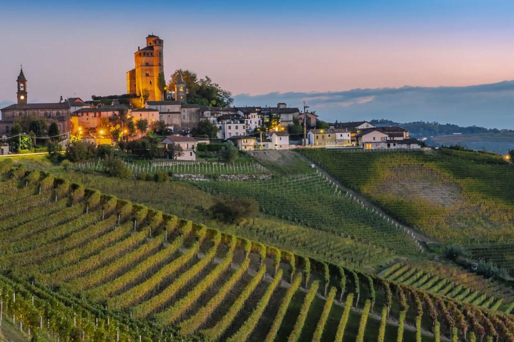 Weinberg in Italien